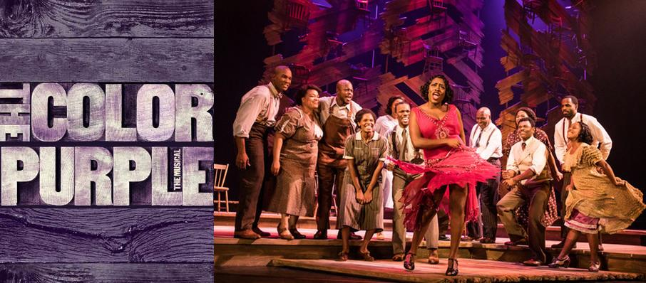 The Color Purple at CNU Ferguson Center for the Arts